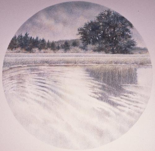 pond-series-5-ed_em