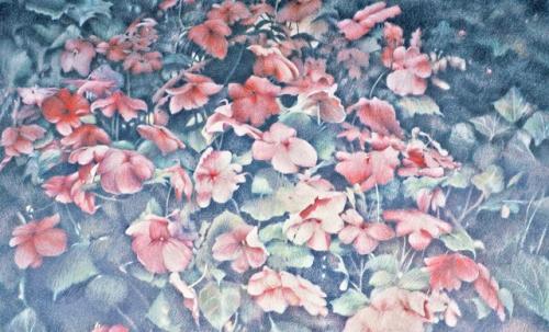 Flower Form 2, ed _em2copy